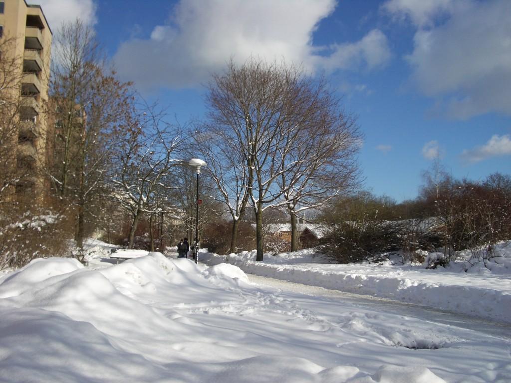 Snöbild-3